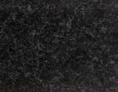 Labrador Black SF
