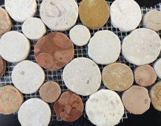 Mosaico round travertino